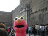 Elmo went to Rome!!!